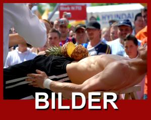 Bilder-header
