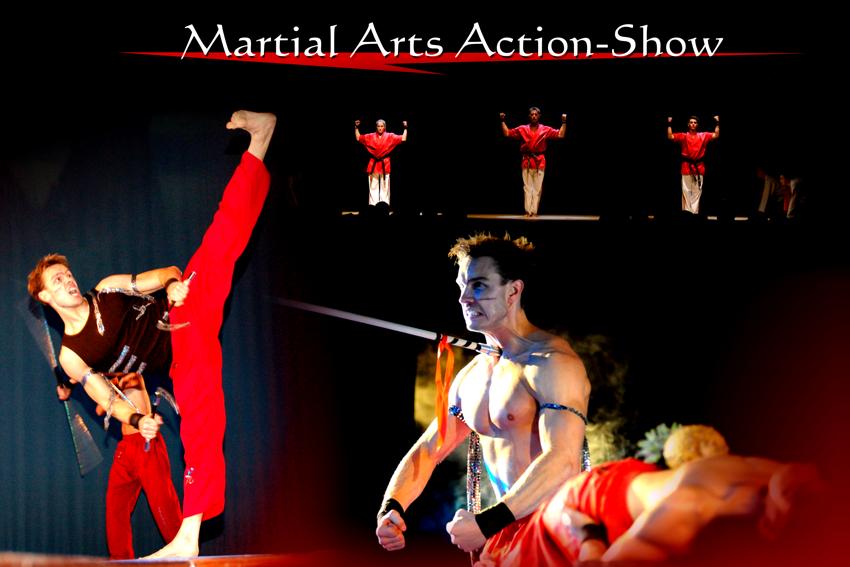 Standard Martial Arts Show
