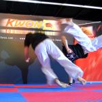 Kwon16