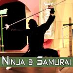 Portfolio-Header-ninja