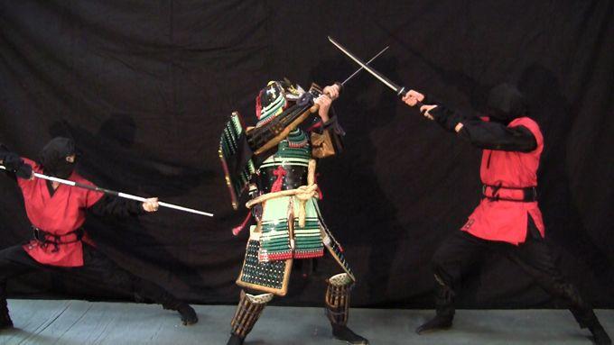 Samurai-Ninja4