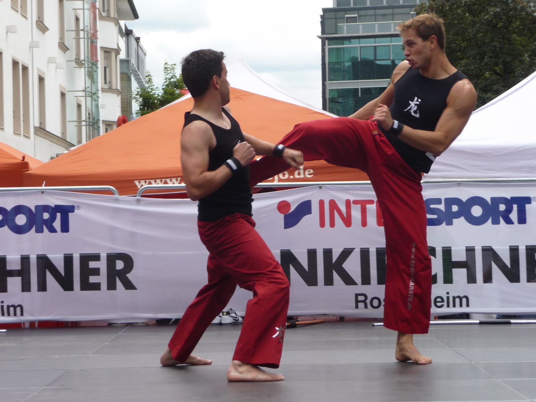 Stadtfest2011_06