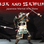 Ninja Samurai Header